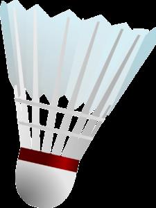 Heino Sport Badminton